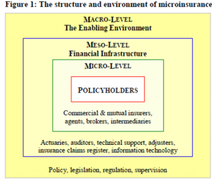 Structure and Environment of Microinsurance