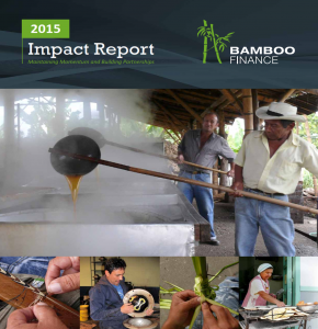 Bamboo Impact report